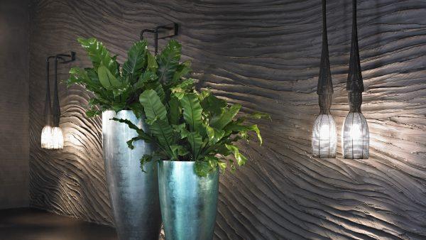 lyseblå krukker, grønne planter