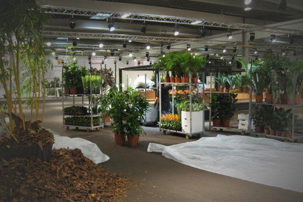 grønne planter engros til projekter