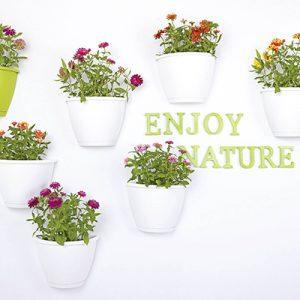 hvide potter, grønne planter